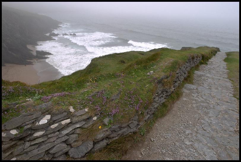 Wild, wild Ireland
