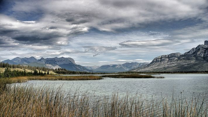 wild wild west (canada)
