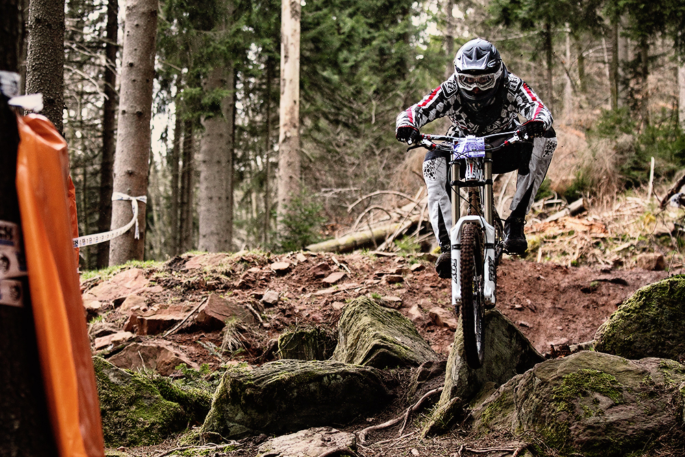 Wildbad DH1