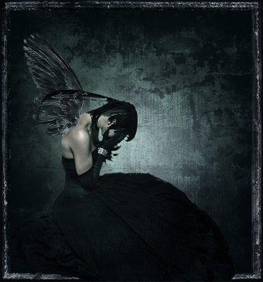 Wild.Child´s Raven...