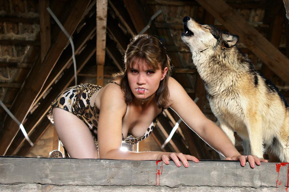 Wilde Tiere