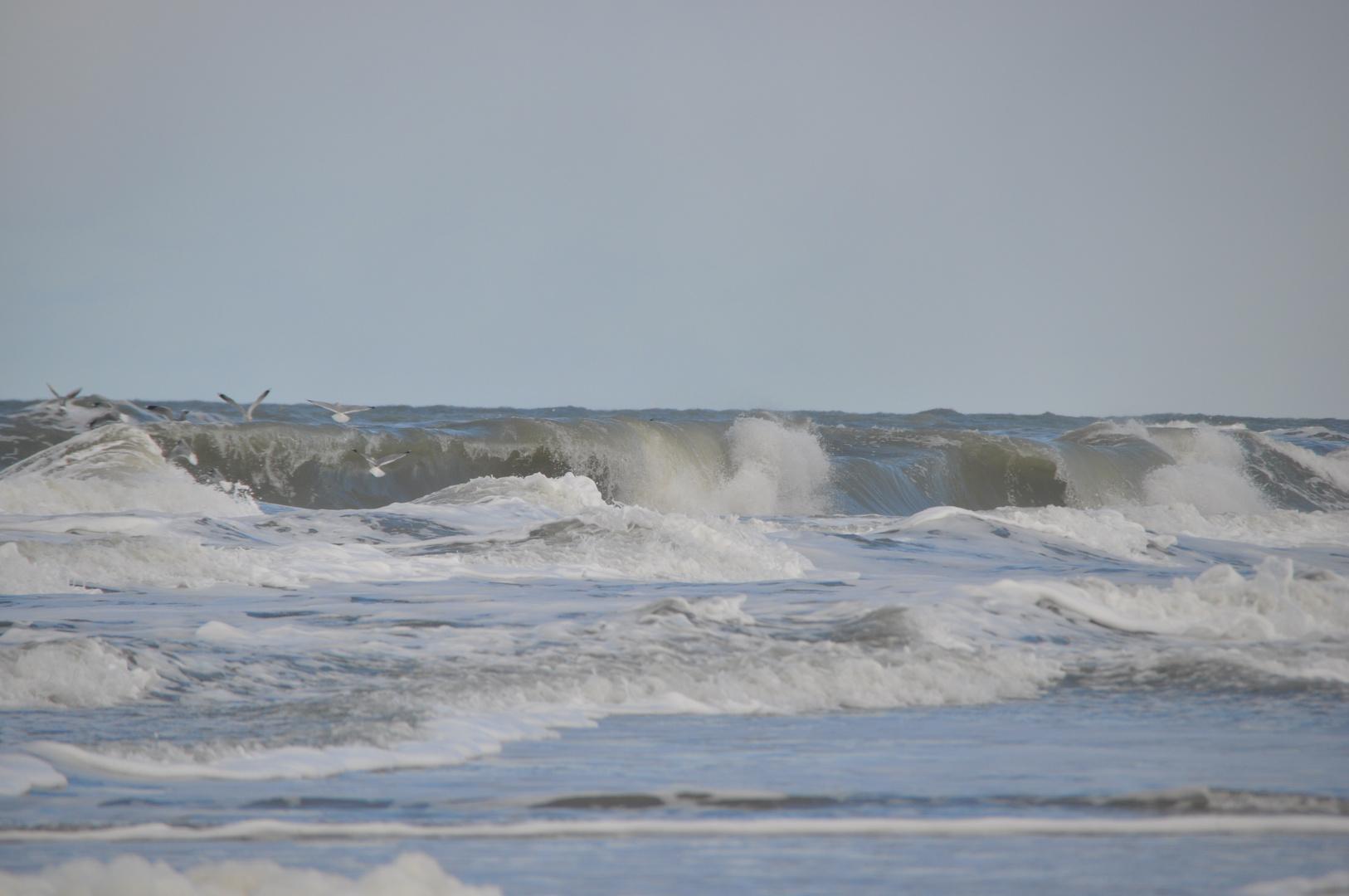 wilde Wellen