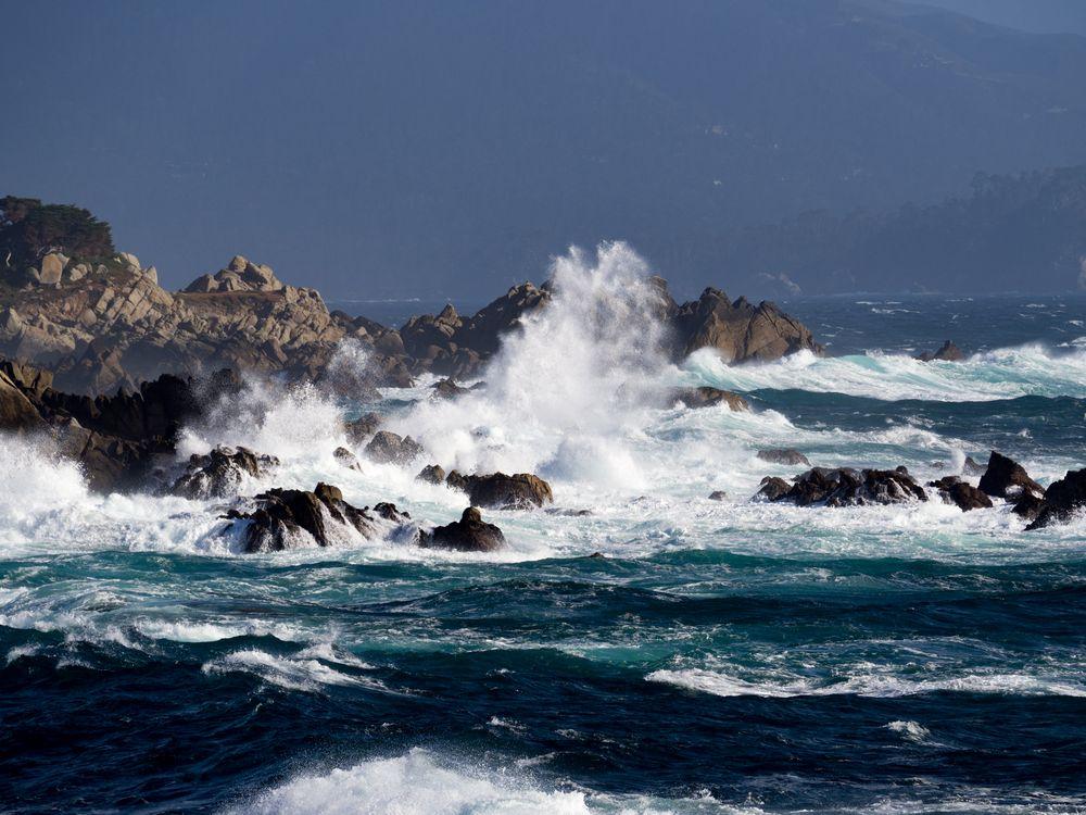 Wilder Pacific