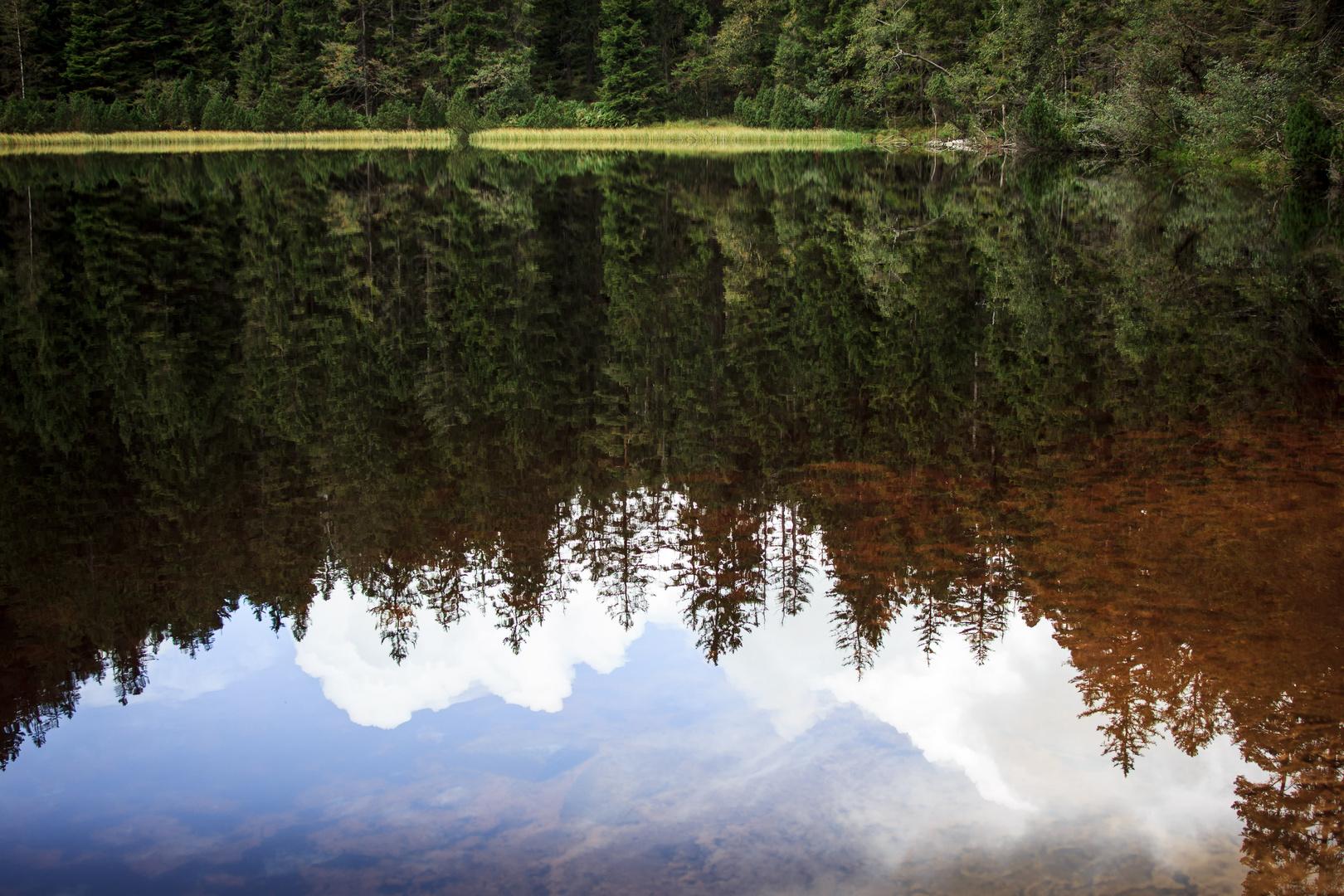 Wilder See fängt Himmel ein