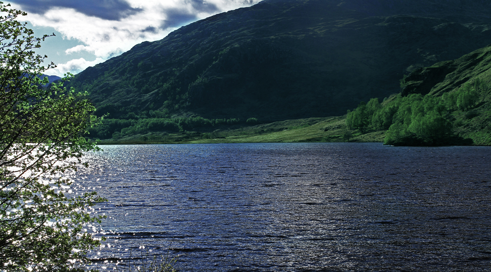 Wildes Schottland II