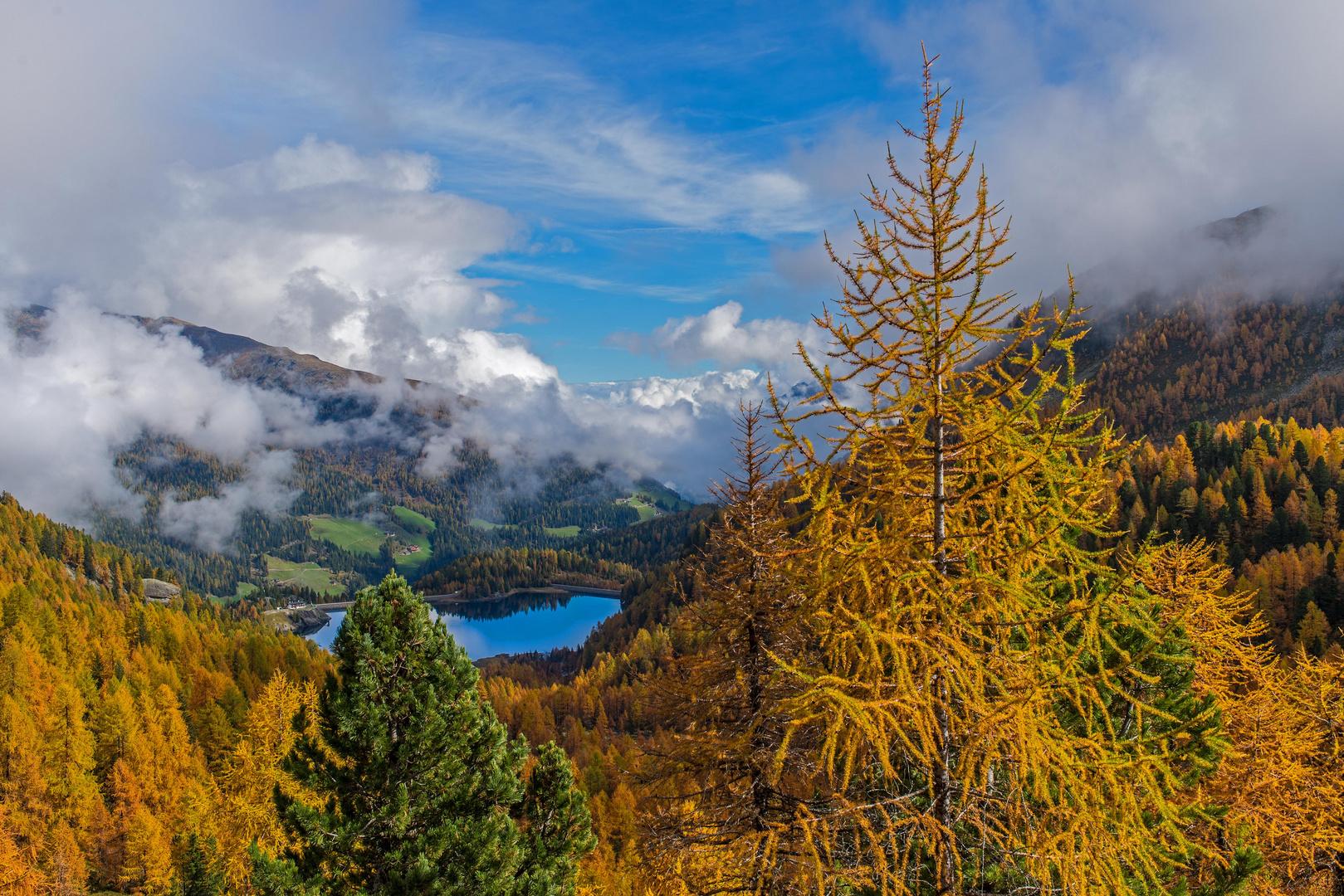 Wildes Südtirol 4 - Herbstfarben