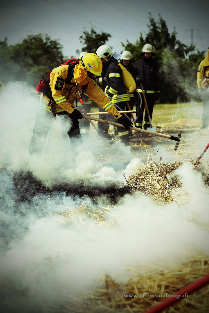 Wildland firefighting #1