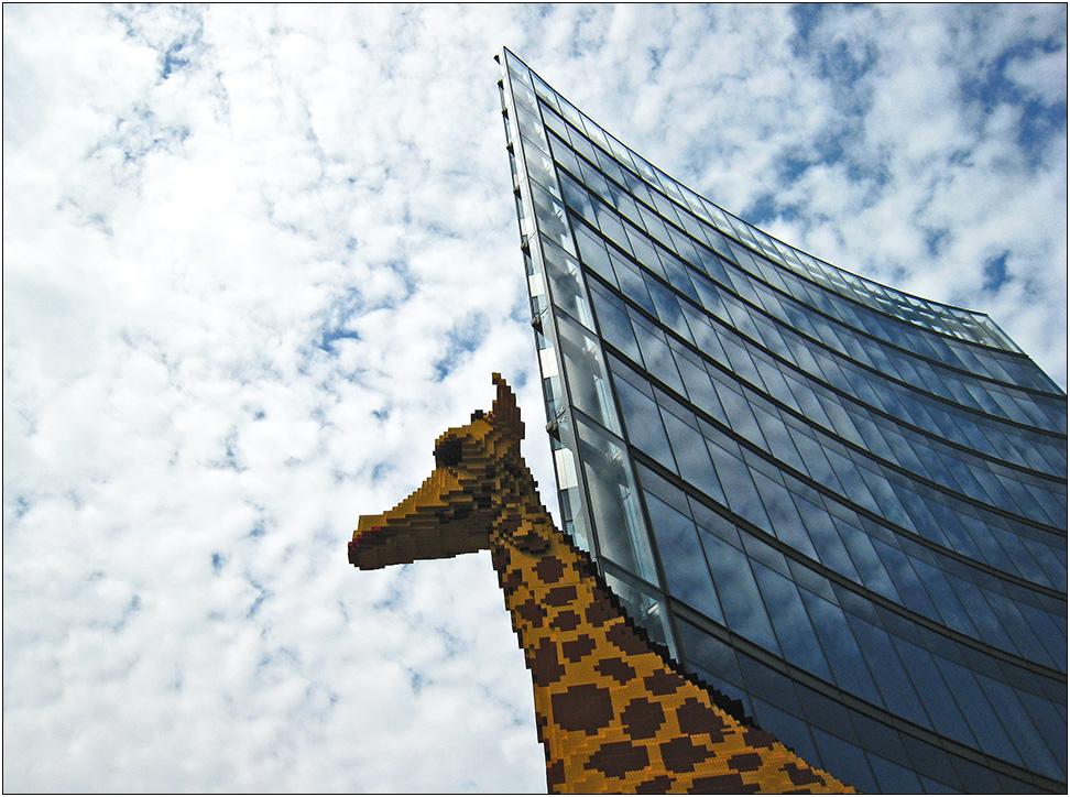 Wildlife am Potsdamer Platz