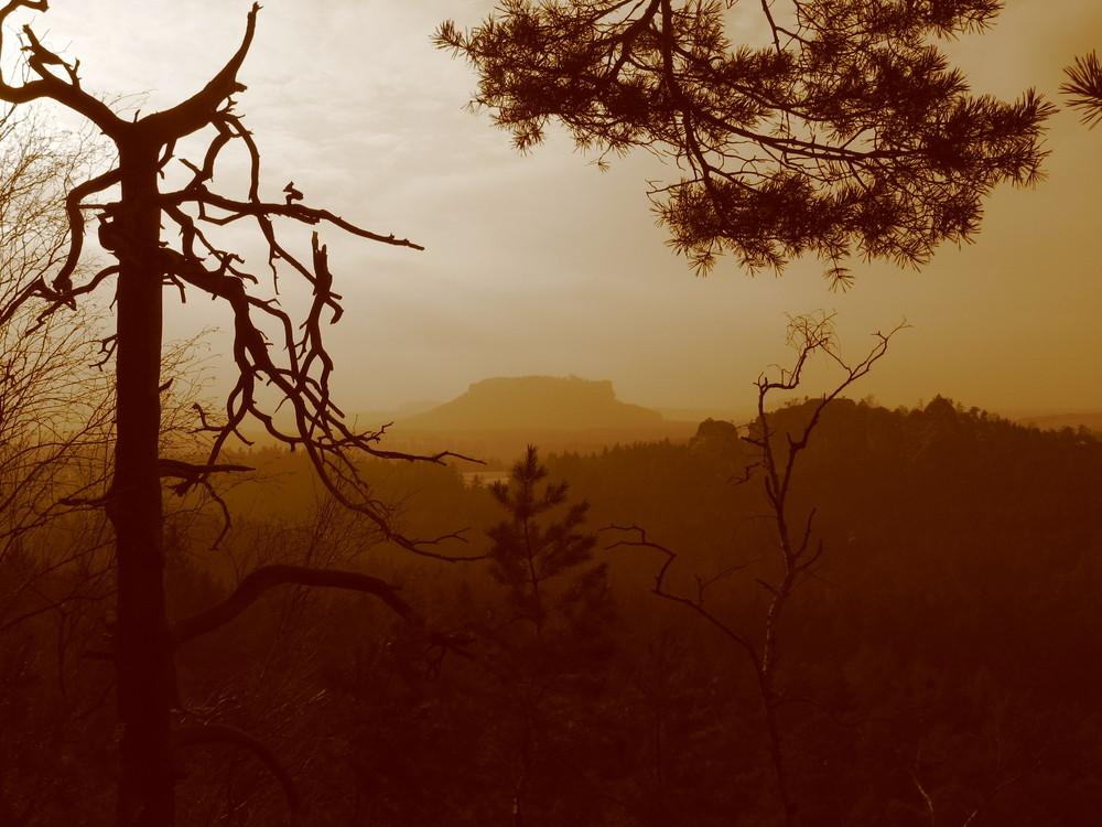 Wildromantisches Elbsandsteingebirge