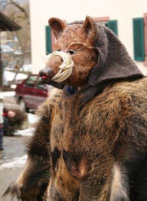 Wildschwein Häs