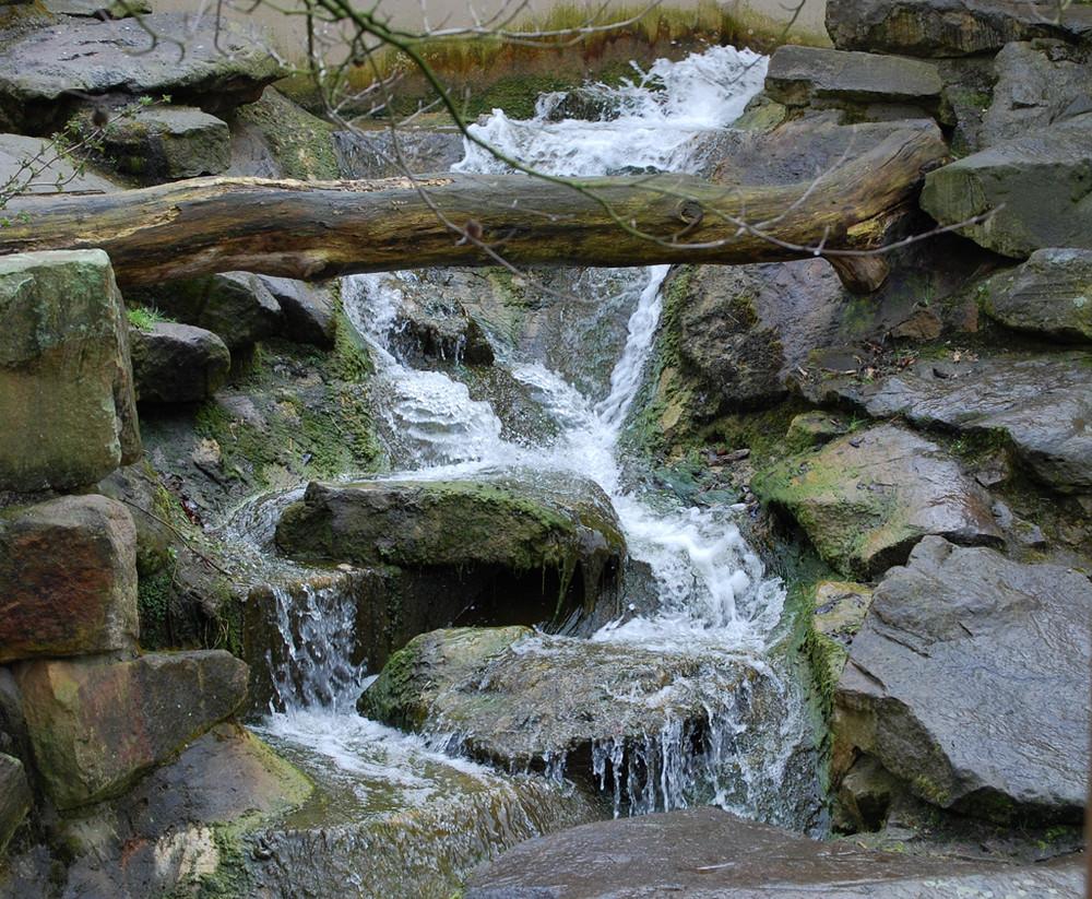 Wildwasser !!!!