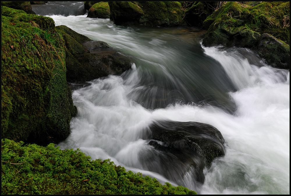Wildwasser IV