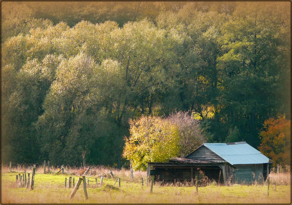 Wildwest oder Westerwälder Highlands