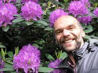 Wilfried Martin