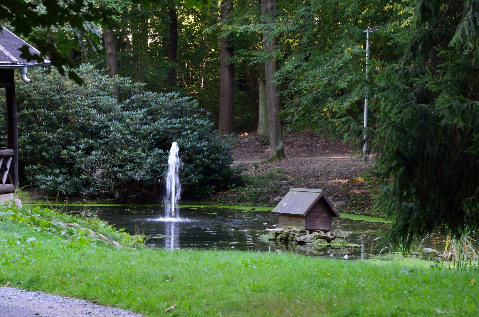 """Wilhelm Wunderlich Park Meerane """"Ententeich"""""""