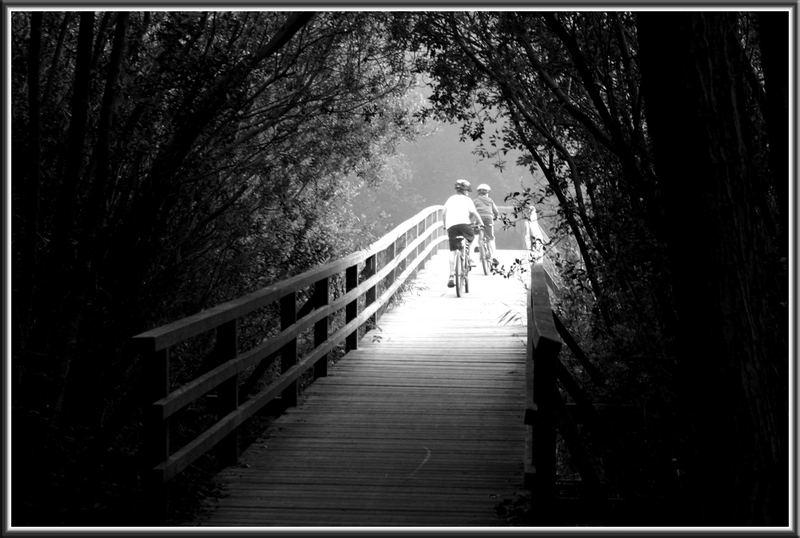 """""""Wilhelmsbrücke"""" :-)"""