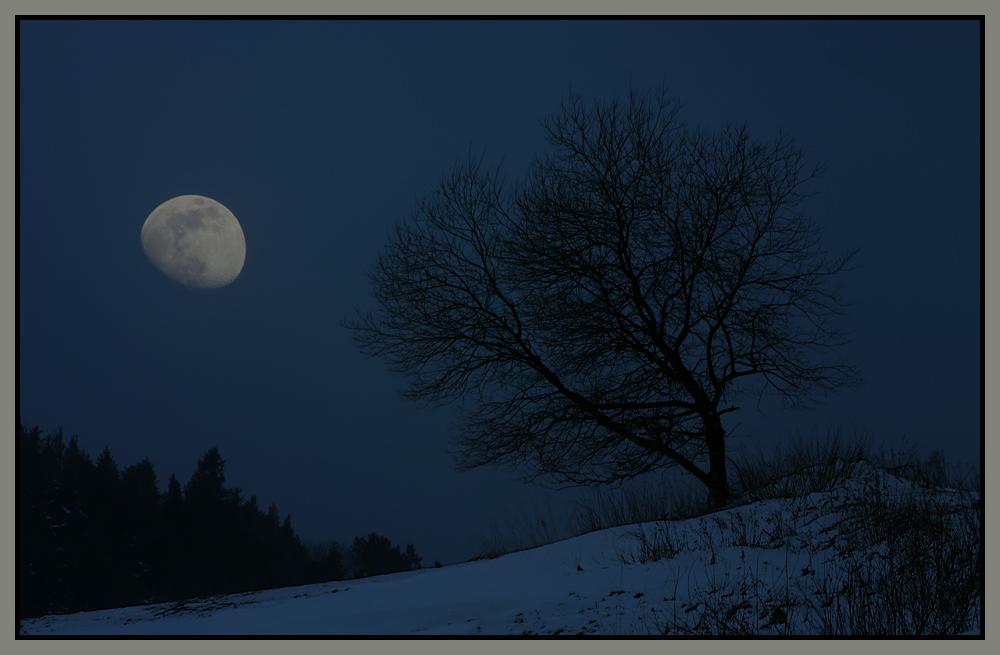 Willinger Mondnacht
