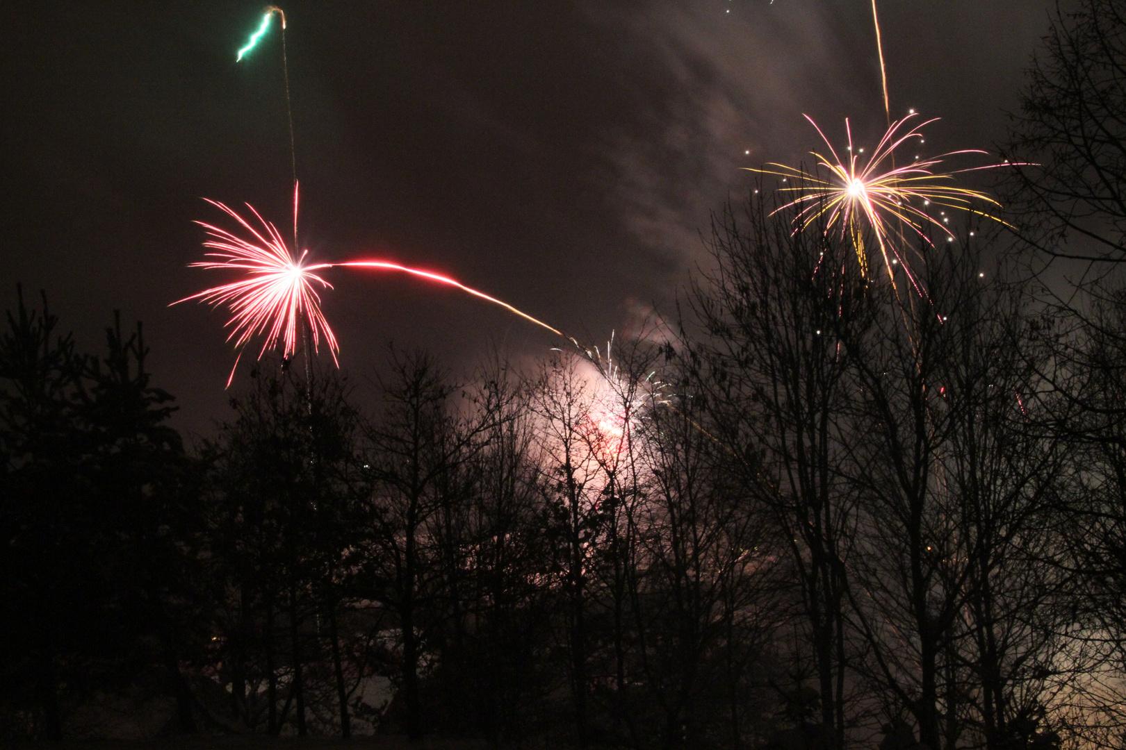 Willkommen 2011