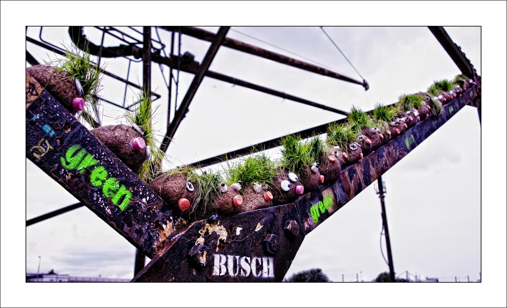 Willkommen im Busch