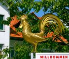 Willkommen in Bauma im Altersheim und Pflegeheim Blumenau