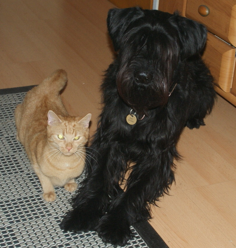 Wilma und Rufus