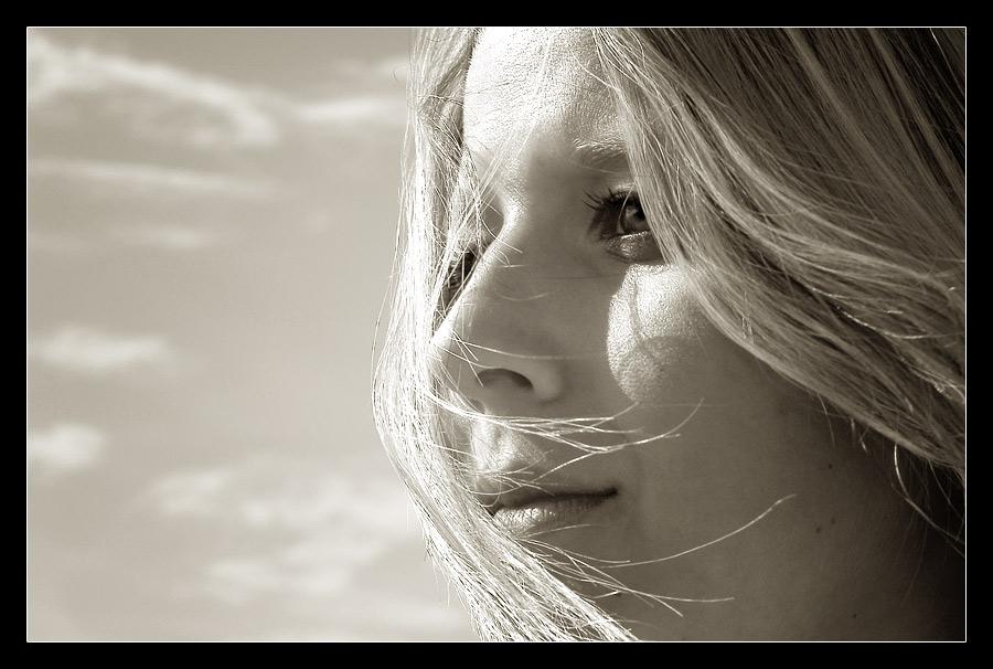 .: Wind :.