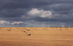 Wind Feld Wolken