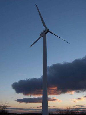 Wind in den Armen der untergehenden Sonne.