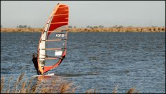 Wind Surf in river Tejo