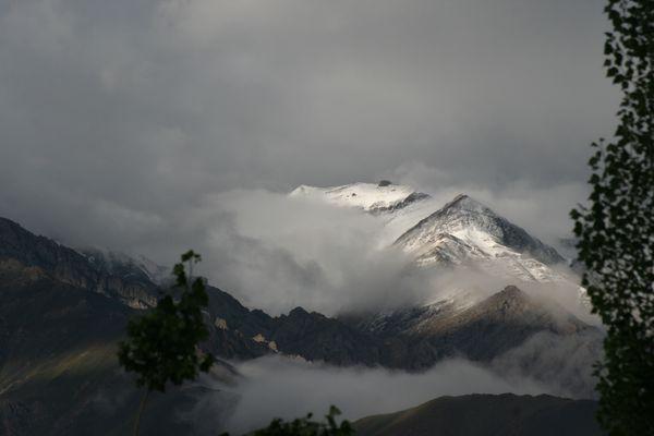 Wind, Wolken und Bäume in Ladakh - 2