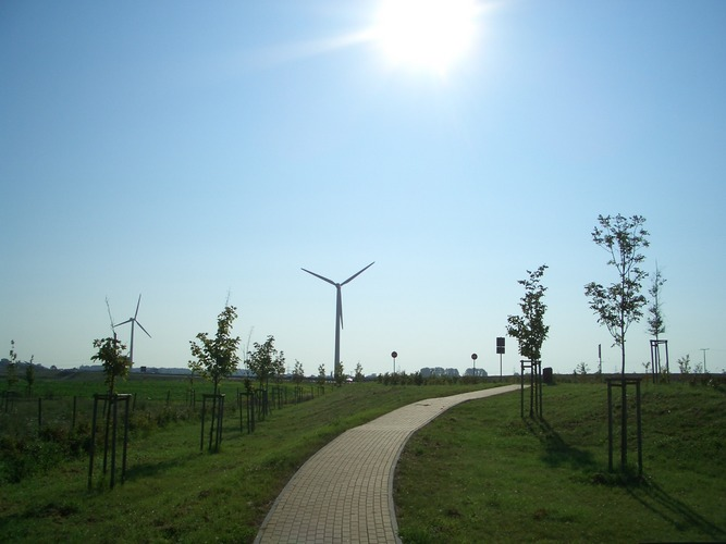 Windenergie ins Licht gerückt