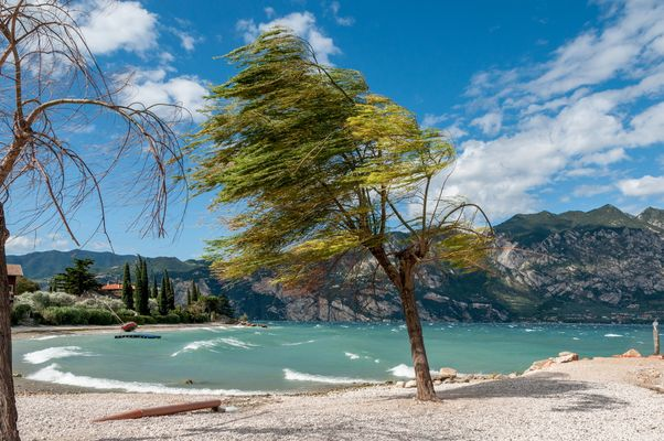Windig - Gardasee