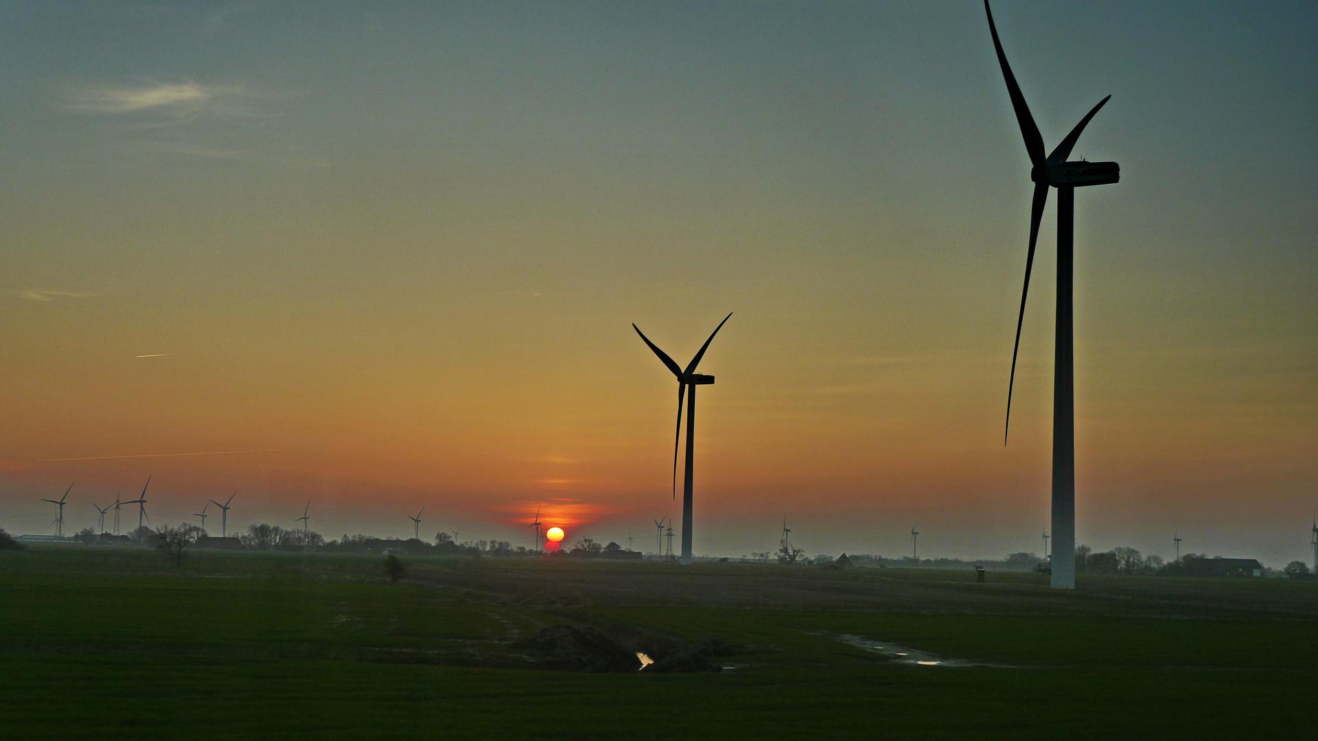 Windkraft gegen Sonnenenergie