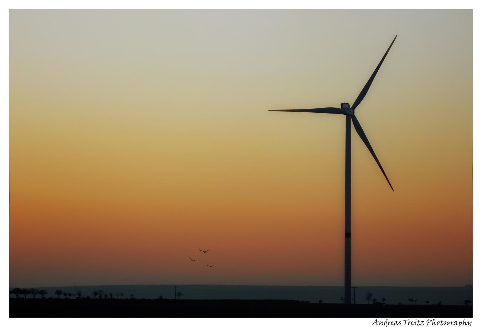 Windkraft & Sonnenuntergang