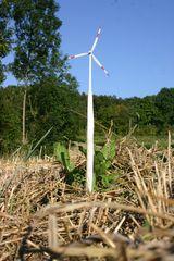 Windkrafttintling