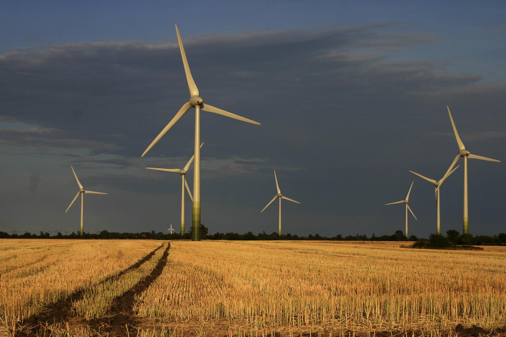 Windmills on Fehmarn