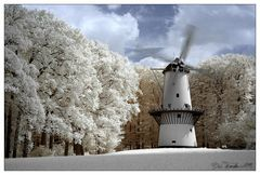 Windmolen <Infrarot>