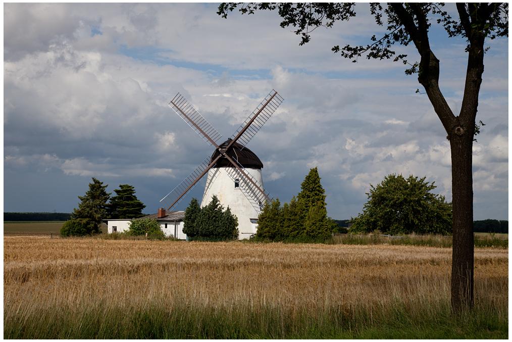 Windmühle als Ferienhaus