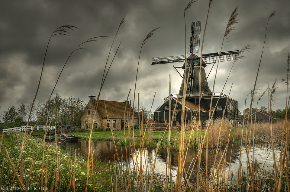 Windmühle De Rat - IJlst - NL- The End