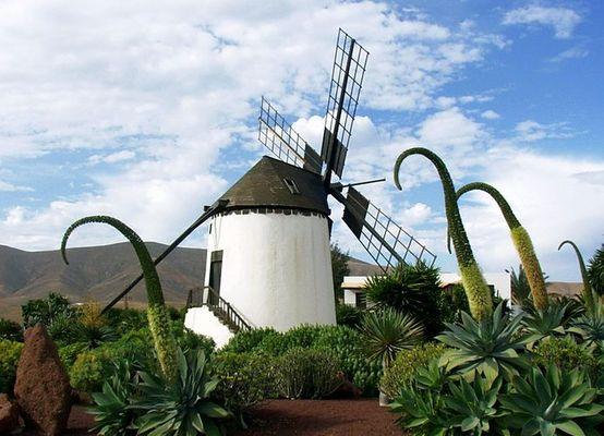 Windmühle