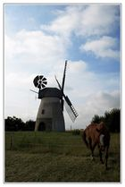 Windmühle Hille