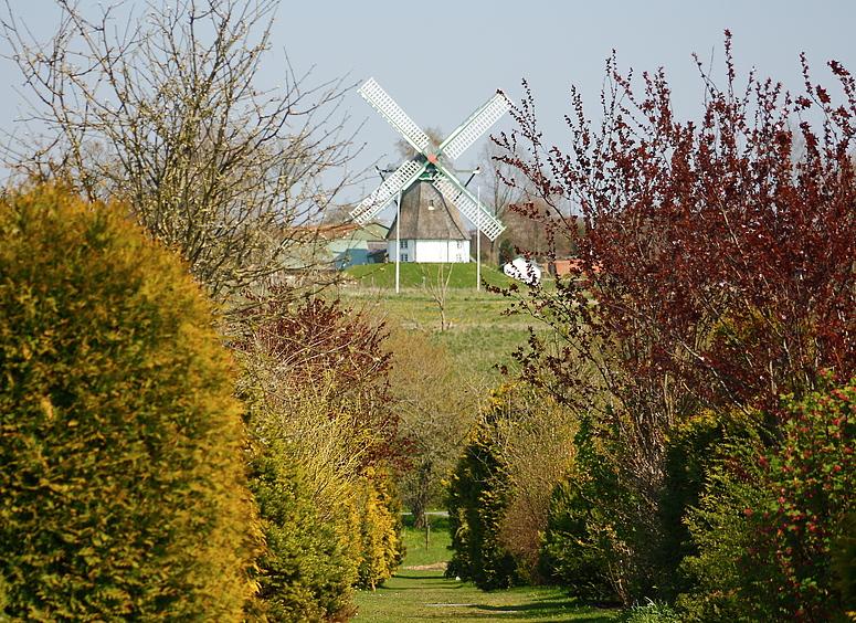 """Windmühle """"Hoffnung"""""""