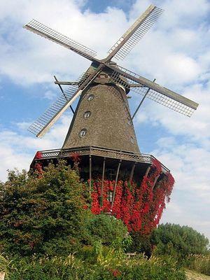 Windmühle im Herbst