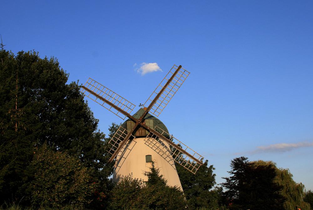 Windmühle in Abendlicht