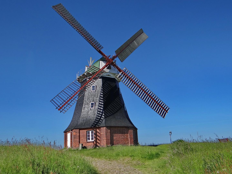 Windmühle in Boiensdorf am Salzhaff
