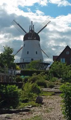 Windmühle in Gudhjem (1)