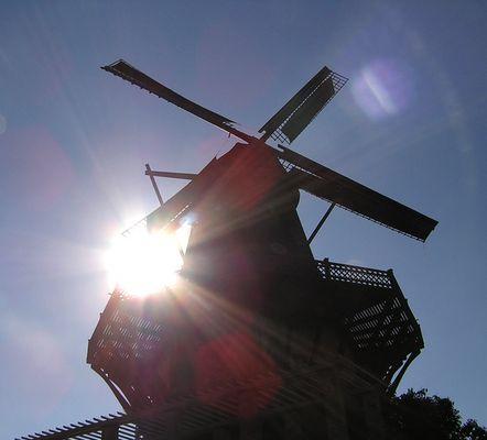 Windmühle in Potsdam