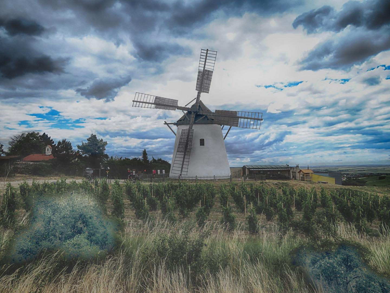 Windmühle in Retz
