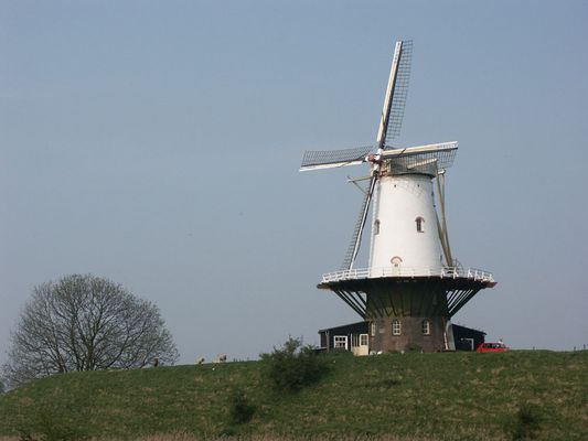 Windmühle in Veere auf Walcheren