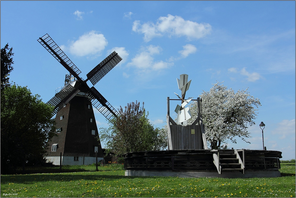 Windmühle in Woldegk ...